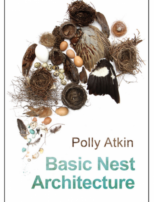 Basic Nest Architecture, Polly Atkin