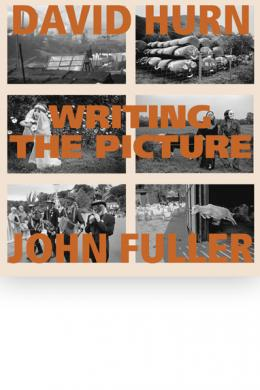 writing the picture, hurn, fuller