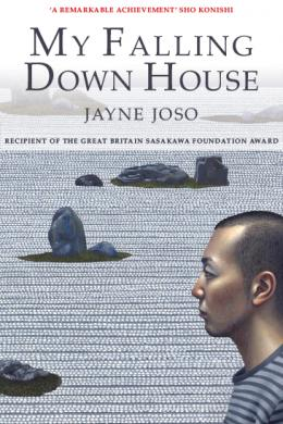 My Falling Down House Jayne Joso