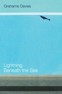 Grahame Davies, Lightening Beneath the Sea
