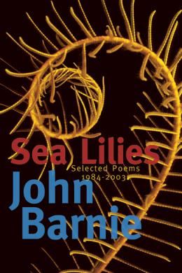 sea lillies, john barnie