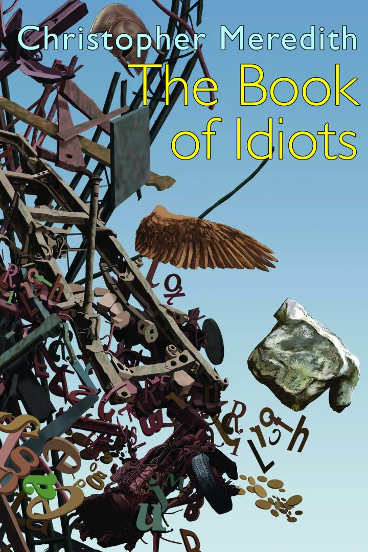 The Book of Idiots, Christopher Meredith